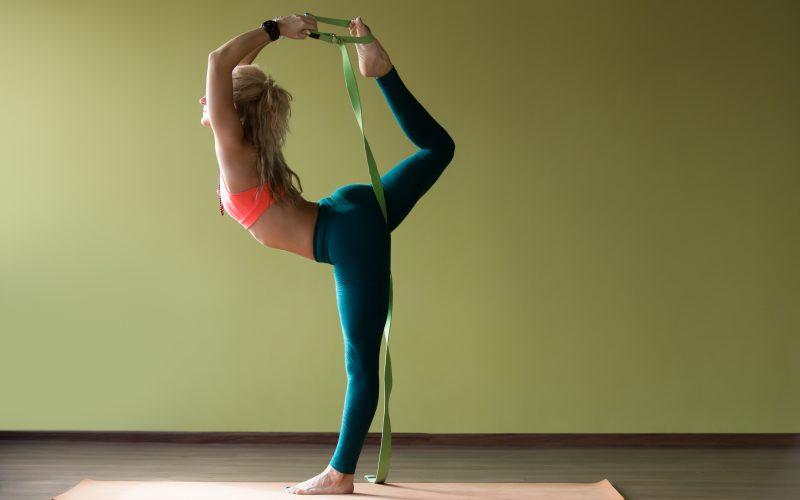 The Humble Life Of Yoga Master, B.K.S Iyengar