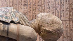 cocain mummies - shutterstock_422842150