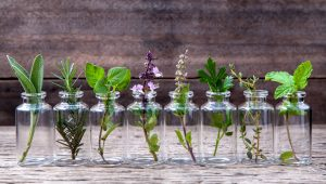 essential oils - shutterstock_362623601