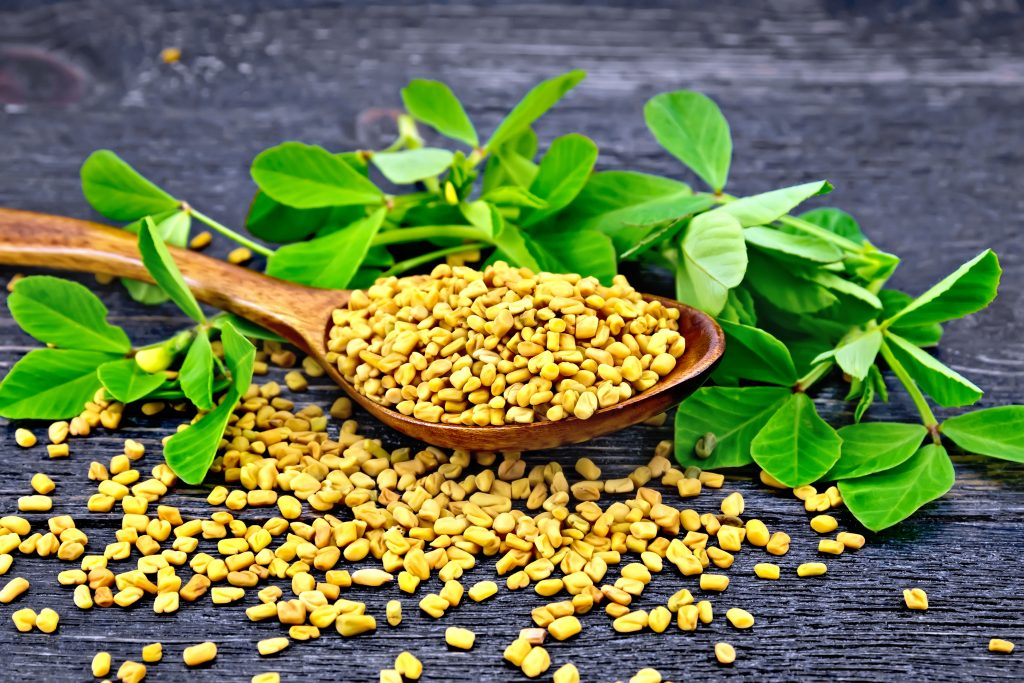 Fenugreek, Maca, and Mucuna: What Can These Lovely Herbs Do For You?