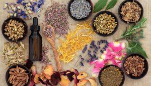 herbs shutterstock_171587129
