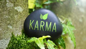 karma drives us crazy - shutterstock_223482313