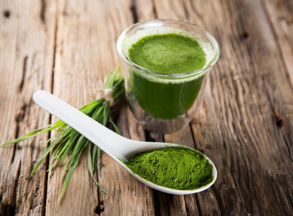 The Big Powder Healers: Wheatgrass, Barley Grass, Spirulina & Moringa